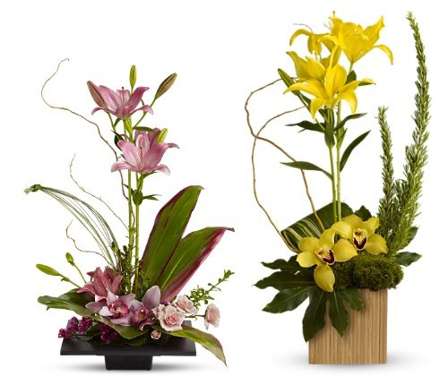 Teleflora Zen Flowers Collection