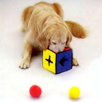 Kyjen I-Qube Dog Toy