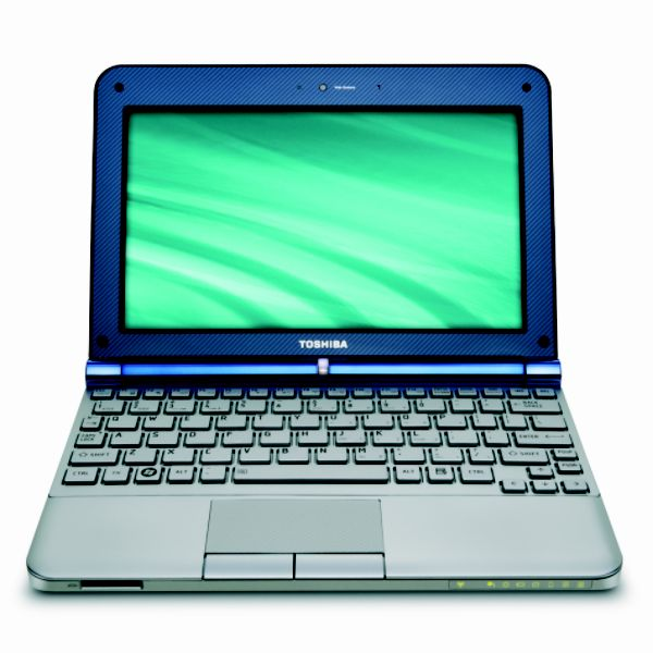 Toshiba NB205-N325BL 250GB Mini Netbook PC