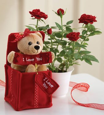 I Love You Bear with Mini Rose