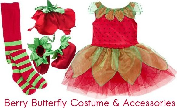 berry butterfly costume and accessories