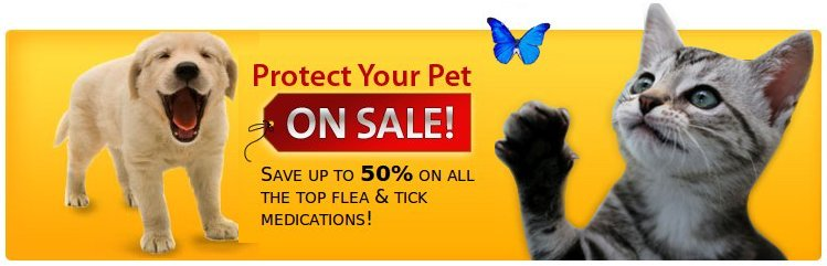 Protect your Pet with Savings