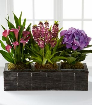 The FTD Harvest Jewels Windowbox by Better Homes and Gardens