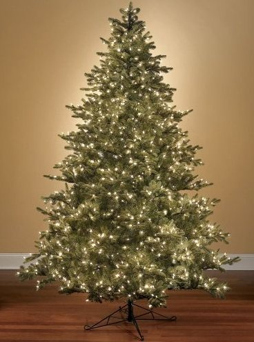 world's best Prelit Noble Fir