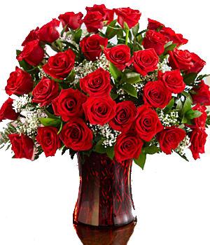 Three Dozen Long Stemmed Red Roses