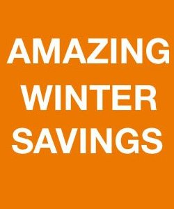 home depot winter savings