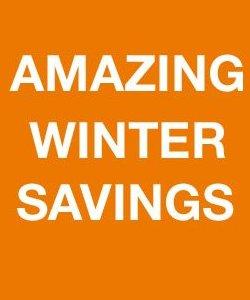 home depot winter savings
