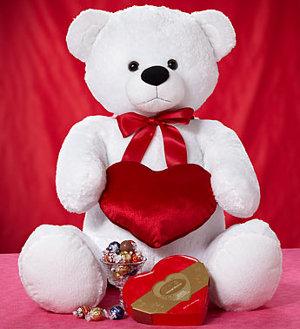 Valentine teddy gift