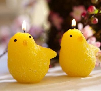 chick shaped candles