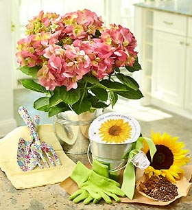 mother's day plant gift set