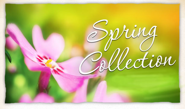 novica spring collection