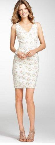 Linear Plains Print Dress