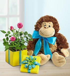 Flower Coupons on Save 15  On Birthday Flowers   Gifts At 1800 Flowers