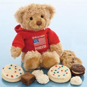 patriotic-bear-and-cookies