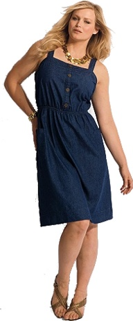 plus size Dress by Denim 24/7