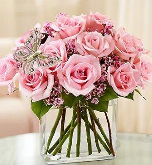 modern pink roses