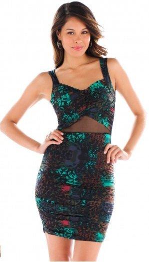 Animal Sizzle Dress
