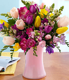 lavish freesia