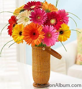 Happy Gerbera Daisy Bouquet