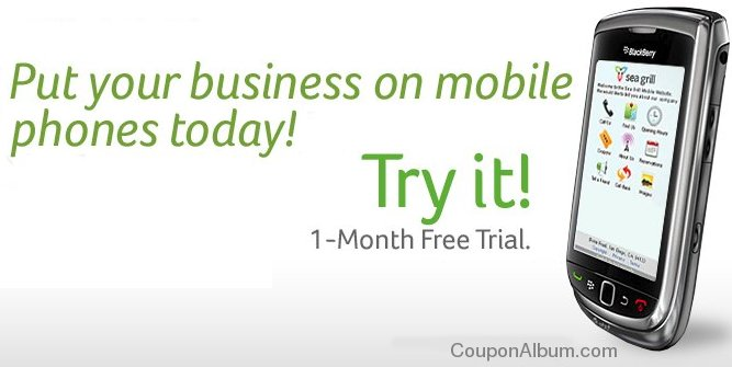 network solutions mobile websites offer