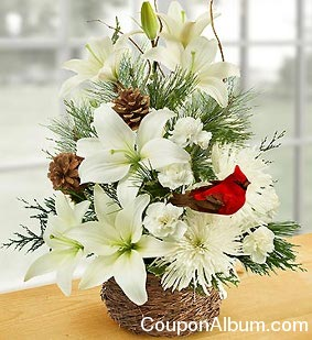 Flower Coupons on 15  On 1800flowers Christmas Flowers   Gifts   Online Shopping Blog