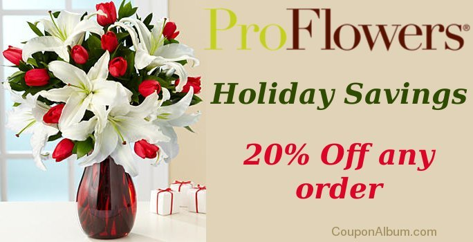 proflowers holiday offer