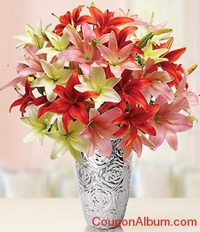 valentines day lilies