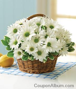 irish daisy basket