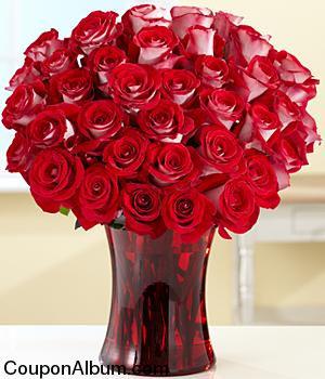 36 red velvet roses