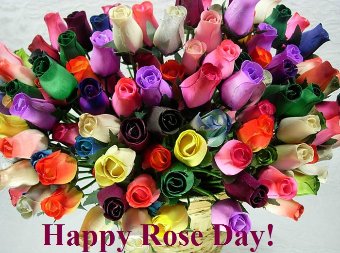 Happy Rose Day 2014